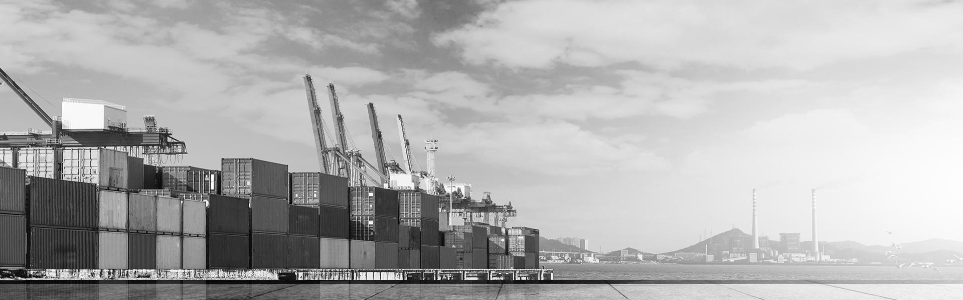 trade*export